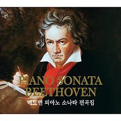 베토벤: 피아노 소나타 전곡집 - 프리드리히 굴다