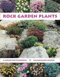 Rock Garden Plants (Hardcover)