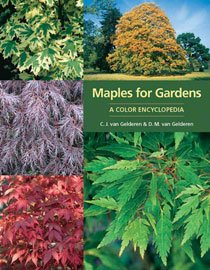 Maples for Gardens(Hardcover)