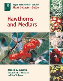Hawthorns and Medlars (Hardcover)