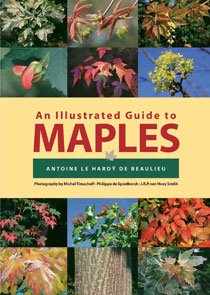 Illustrated Guide to Maples (Hardcover)