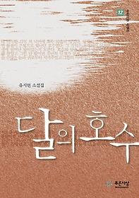 달의 호수 : 유시연 소설집