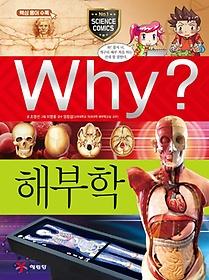 Why? 해부학