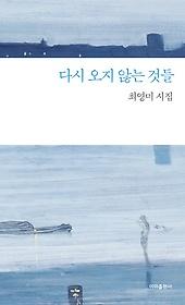 다시 오지 않는 것들 : 최영미 시집