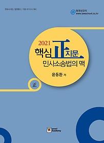 2021 핵심 정지문 민사소송법의 맥