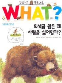 WHAT왓? 회색곰 왑은 왜 사람을 싫어할까?
