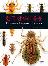 한국 잠자리 유충