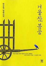 겨울잠, 봄꿈 : 한승원 장편소설