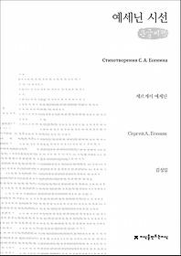 예세닌 시선 (큰글씨책)