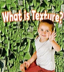 What Is Texture? (Paperback)