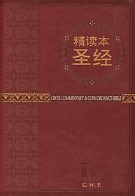 톰슨성경(중국정독본성경)(중/적색)