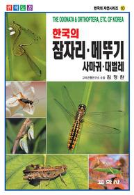 한국의 잠자리 메뚜기