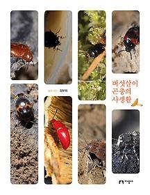 버섯살이 곤충의 사생활