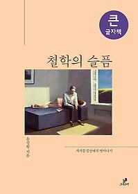 철학의 슬픔 (큰글자책)