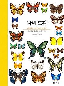 나비 도감