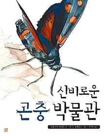 신비로운 곤충 박물관