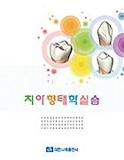 치아형태학실습