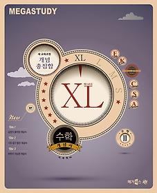 수학 개념서 엑스라지 XL 수학 2 (2017년용)