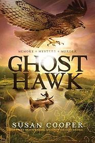 Ghost Hawk (Hardcover)