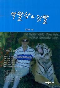 역발상의 깃발 : 김효태 시집