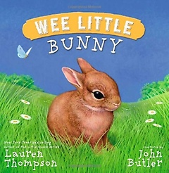Wee Little Bunny (Hardcover)