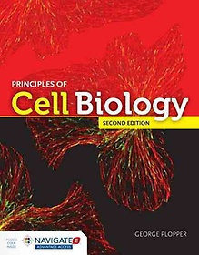 "<font title=""Principles of Cell Biology (Paperback / 2nd Ed.)"">Principles of Cell Biology (Paperback / ...</font>"