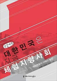 대한민국은 지금 체험지향사회 (큰글씨책)