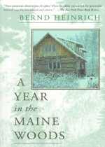A Year in the Maine Woods (Paperback)
