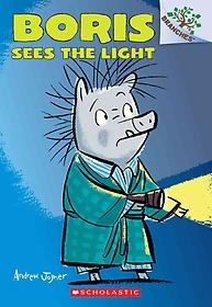 Boris Sees the Light (Paperback)