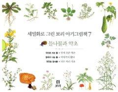 세밀화로 그린 보리 아기그림책 7 3권 세트