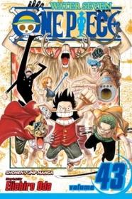 One Piece Vol.43 (Paperback)
