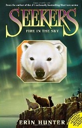 Seekers #5 : Fire in the Sky (Paperback)