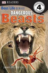 "<font title=""Dangerous Beasts: Boys"