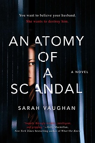 Anatomy of a Scandal (Hardcover)