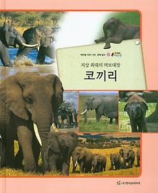 지상 최대의 먹보대장 코끼리 (포유류)
