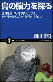 "<font title=""鳥の腦力を探る 道具を自作し持ち步くカラス、シャガ-ルとゴッホを見分けるハト (サイエンス.アイ新書)"">鳥の腦力を探る 道具を自作し持ち步くカラ...</font>"