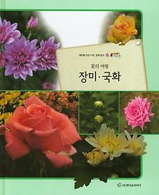 꽃의 여왕 장미, 국화 (식물)