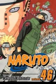 Naruto Vol.46 (Paperback)