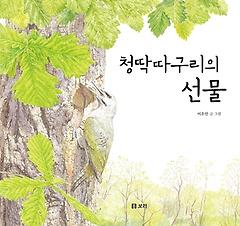 보리 빅북 12 - 청딱따구리의 선물 (빅북)