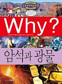 (초등과학학습만화)why? .54 :암석과 광물
