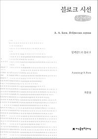 블로크 시선 (큰글씨책)