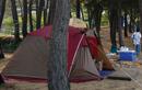 태안반도의 오지, 꾸지나무골해변 캠핑장
