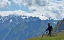 달리고 싶은 유럽 2위, 스위스 알프스 산악자전거