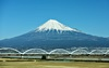 일본 소설, 여름의 끝