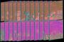 [EBS 초등영어] EBS 초목달 Mercury(머큐리) & Venus(비너스) 워크북 12개월 Level 1, 2 24종 세트