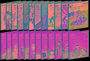 [EBS 초등영어] EBS 초목달 Saturn(새턴) 스토리북 + 워크북 6개월 Level 6 24종 세트