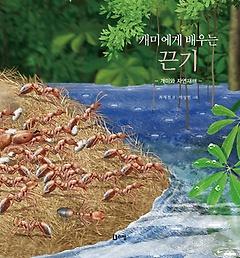 개미에게 배우는 끈기: 개미와 자연재해
