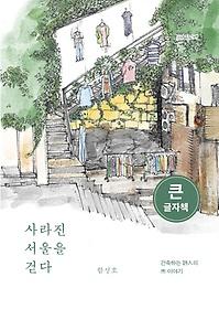 사라진 서울을 걷다(큰글자책)