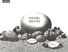 바닷가에는 돌들이 가득