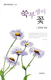 쑥부쟁이 꽃